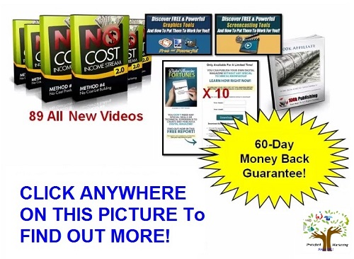 No Cost Income Stream 2.0 Internet Marketing Program